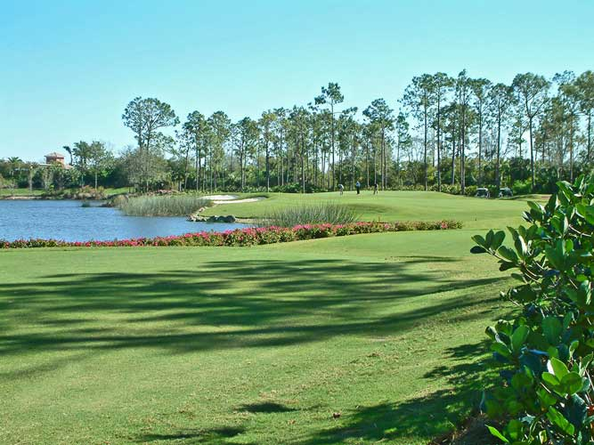 A view to the green at Mediterra golf cousre - Naples, Florida
