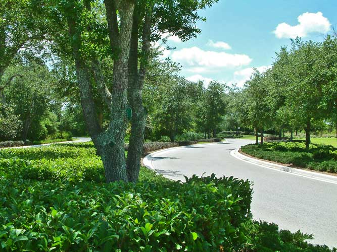 Street view along the main entry drive to the Ritz Carlton Golf Course - Sarasota, Florida